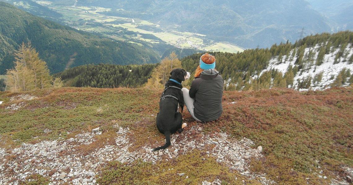 FRITZ – Mein treuer Begleiter
